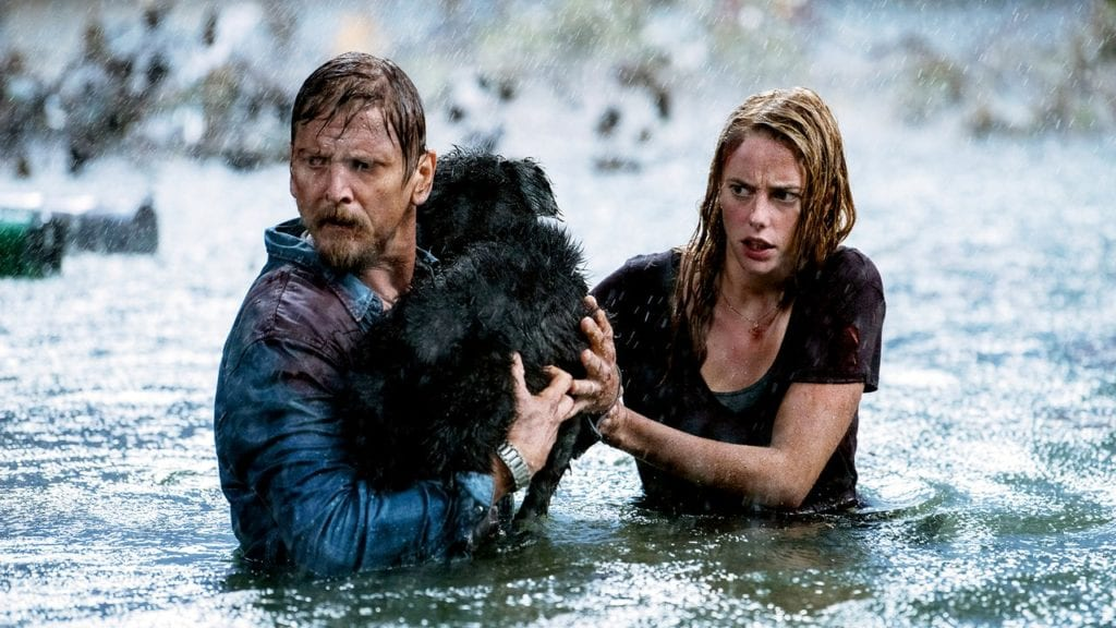 Haley and Dave attempt to save their dog from alligators