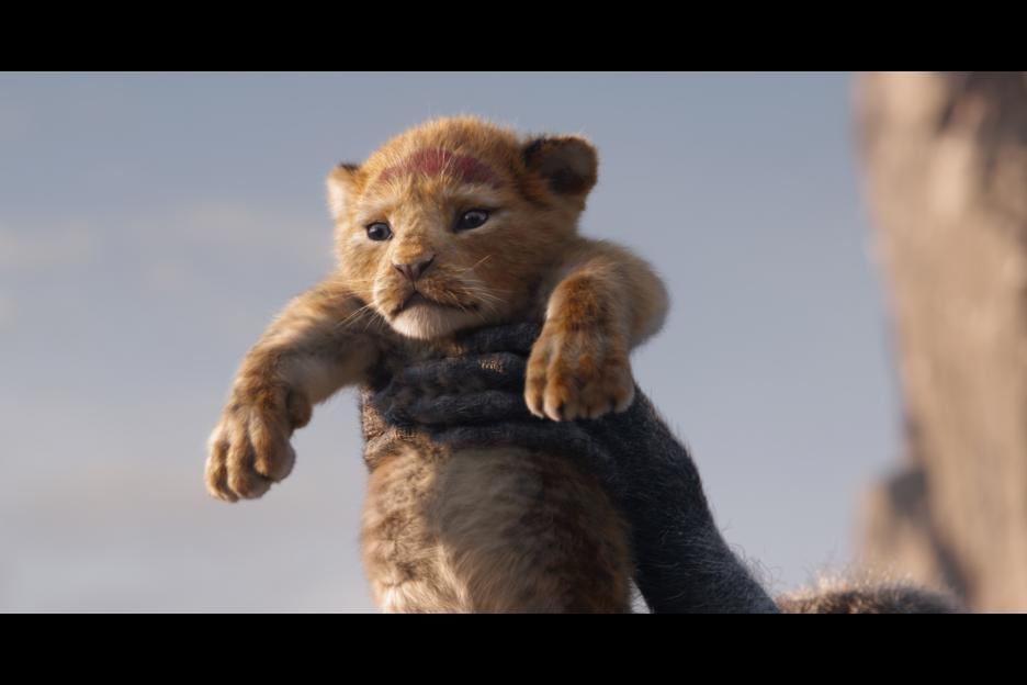 Simba being declared the next Lion King