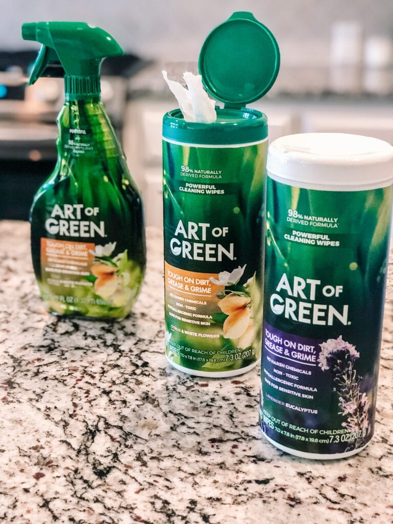 Art of Green Cleaning Products