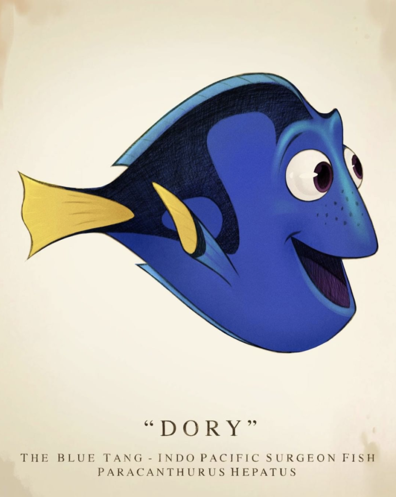 Dory; best comedy movies for tweens